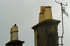 Chimney (Billy McKechnie) Tags: ardbeg jackdaw isleofbute