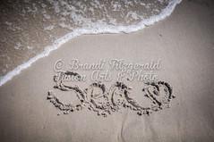 BrandiFitzgerald.LidoBeach011 (brandifitzarts) Tags: newyork beach waves scene longbeach shore eastcoast beachscene sandwriting lidobeach newyorkbeach brandifitzgerald sayingsinsand