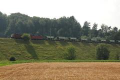 Gterzug 69569 M.arin - E.pagnier nach L.ausanne T.riage mit SBB Lokomotive Re 4/4 II 11311 und SBB Lokomotive Re 4/4 III 11352 ( Ehemalige Sdostbahn Lokomotive ) auf dem Bahndamm bei Gmmenen im Kanton Bern in der Schweiz (chrchr_75) Tags: train de tren schweiz switzerland suisse suiza swiss eisenbahn railway zug sbb sua locomotive re juli christoph svizzera chemin 44 centralstation sveits fer locomotora tog ffs juna bundesbahn lokomotive lok sviss ferrovia zwitserland sveitsi spoorweg suissa locomotiva lokomotiv ferroviaria cff  re44 locomotief chrigu  szwajcaria rautatie   2013 1307 schweizerische zoug trainen  chrchr hurni chrchr75 bundesbahnen chriguhurni albumsbbre44iiiii chriguhurnibluemailch albumbahnenderschweiz2013712