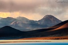 Wind Brushstrokes (Tommaso Renzi) Tags: chile verde sand wind bolivia highlights blanca laguna winds vulcano lagunas potosi sahdows bolivianaltiplano sairecabur lagunablancaborder