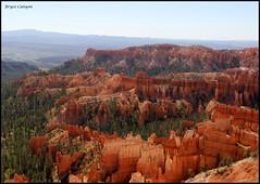 140 Bryce Canyon (Chrisjam2009) Tags: usa holiday mountains colour squirrel rocks desert canyon bryce chrisjames canon60d