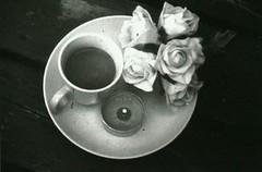 Resting (Frances Sousa) Tags: flowers blackandwhite art film floral analog candles tea 110