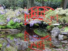Japanese Garden (Shahrazad26) Tags: holland japanesegarden nederland thenetherlands denhaag paysbas thehague zuidholland clingendael lahaye japansetuin landgoedclingendael