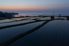 Day is done (k n u l p) Tags: sunset sea water kyoto terrace sony tango 京都 fileds 丹後 棚田 nex7 sodeshi sel1018 袖志 11018mm