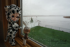 The girls wish the rain would stop so they can go out and play on the grass