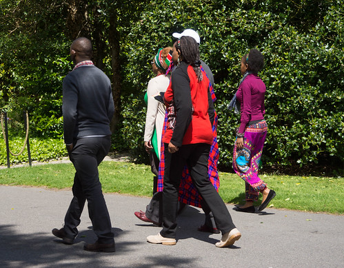 I HAD A WONDERFUL DAY AT AFRICA DAY 2015 [FARMLEIGH HOUSE IN PHOENIX PARK]-104534