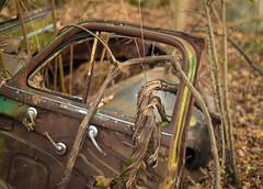 Rusty door (jaros 2(Ron)) Tags: rustycardoor nikond800 50mm18 nifftyfifty nikon50mm18 ontario canada raw lightroom grapevine