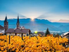 Sonnenaufgang mit Sternchen (Simon Neutert) Tags: sonnenaufgang sdtirol tirol italy italien wine wein
