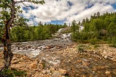Flussbett (Panasonikon) Tags: panasonikon nikond7100 sigma1020 norwegen landschaft landscape flus river wald forest baum tree weitwinkel