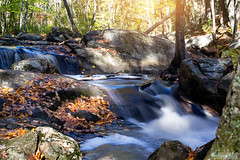DSC_3448 (missamagnificent) Tags: newengland newhampshire nh 603 new hampshire england foliage leaves fall autumn waterfall river stream water forest woods natural outside outdoors hike walk long exposure