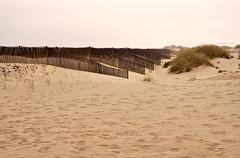 Costa Nova - Dune e steccati (Celeste Messina) Tags: steccato fence dune dunes sabbia sand spiaggia beach costanova portogallo portugal orme impronte footsteps atmosfera atmosphere rainyday pioggia foschia mist