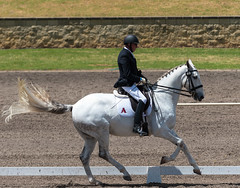 161023_Aust_D_Champs_Sun_Med_4.3_6714.jpg (FranzVenhaus) Tags: athletes dressage australia siec equestrian riders horses performance event competition nsw sydney aus