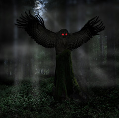 mothman theory (mysteries illustrated) Tags: johnkeel pointpleasant mothman