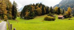 (Alexander Burkhardt) Tags: herbstfrbung herbst baum alpen weg haus landschaft schweiz obwalden