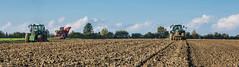 Arbeitsschritte (Fotos aus OWL) Tags: landwirtschaft rben ernte zuckerrben drillen pflgen pflug fendt grimme maxtron roder