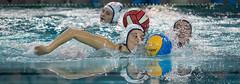 2A150052 (roel.ubels) Tags: uzsc zpb hl productions waterpolo eredivisie utrecht krommerijn 2016 sport topsport