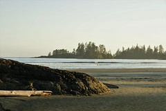 Beach Pacific Rim II (dylan583) Tags: sigmadc2841770oshsm sigmalens sonya700 sonydslra700 tofino pacificrimnationalpark beach britishcolumbia water vancouverisland