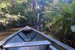 Rezerwat Narodowy Tambopata | Tambopata National Reserve