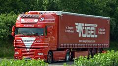 A - Vogel DAF XF 105 SSC (BonsaiTruck) Tags: vgel daf xf 105 lkw lastzug lastwagen truck trucks lorries lorry camion
