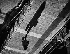 Pulvis et Umbra sumus (Petricor Photography) Tags: milan milano street streetphotography blackandwhite blackwhite shadows shadow urban canonpersonalconnection