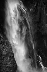 stirling falls, milford sound (rina sjardin-thompson photography) Tags: bnw stirling falls stirlingfalls water waterscape weather wilderness waterfalls monochrome monotone newzealand nz nature rural rinasjardinthompson epic milfordsound southisland