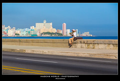 Havanna (Hagens_world) Tags: cuba kuba latinamerica selection havana lahabana man person ocean urban skyline city hagensworldphotography