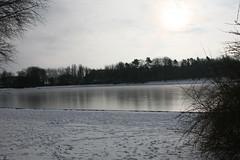 IMG_8393 (anthonywmthomas) Tags: tervuren parc winter landscape belgium