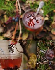 DSC_2212 copy (tj_hinako) Tags: tea drink