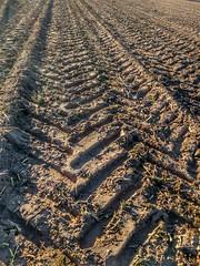 Spuren im Sand ... (Bibendum41) Tags: acker traktoren sand landwirtschaft