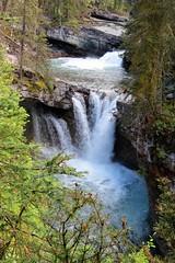 Falling Water (Patricia Henschen) Tags: banff nationalpark alberta canada banffnationalpark parkscanada parcs parks trail johnstoncanyon johnstoncreek waterfalls waterfall hike canyon creek canadianrockies lowerfalls