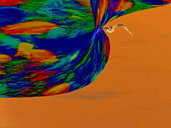 Moving Forward (soniaadammurray - On and off will try to keep up!) Tags: digitalphotography manipulated experimental abstract orange move forward life bird fly quotes greglake victorkiam conradhall waltdisney time moving motivational educational help lookingback curiosity workingtowardsabetterworld