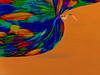 Moving Forward (soniaadammurray - Off) Tags: digitalphotography manipulated experimental abstract orange move forward life bird fly quotes greglake victorkiam conradhall waltdisney time moving motivational educational help lookingback curiosity workingtowardsabetterworld