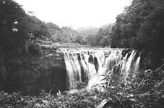 _12 (Taiwan's Riccardo) Tags: 2016 taiwan bw negative 135film fujifilmacros100 plustek8200i leicaiiifrd leicalens elmar fixed 35mmf35 l39 ltm rangefider