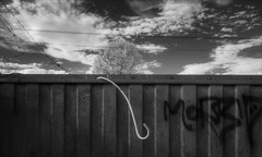 boronia-2175-ps-w (pw-pix) Tags: concrete wall roof ribbed textured corrugated lines parallel grafitti conduit flexibleconduit electricalconduit detached broken urved curled hook crook commercial retail shops wires powerlines barbedwire security trees treetop clouds sky evening rooftop ir infrared bw blackandwhite irmodifiednikon1v1 720nmir boroniamallshoppingcentre boronia easternsuburbs outereast melbourne victoria australia