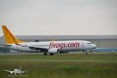 Pegasus - TC-AAO - B737-800 (Aviation & Maritime) Tags: tcaao pegasus pegasusairlines boeing boeing737 b737 b737800 boeing737800 ams eham amsterdam amsterdamairport amsterdamairportschiphol schiphol thenetherlands