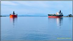 2 Ships 2460 LR (bradleybennett) Tags: ship shipping cargo tanker tank river delta boat port channel steam large crew crane bay ocean dock pier blue red water line bulkcarrier sg friendship eastern asia