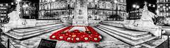 Cenotaph (ianmiddleton1) Tags: cenotaph glasgow poppy rememberance