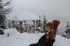 Big Beehive (MetallYZA) Tags: 2016 canada alberta lakelouise hiking hike rando randonne winterhiking snow neige raquettes snowshoeing snowshoes mascot mascotte peluche stuffedanimal rockies rocheuses montagnes mountains