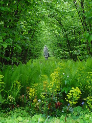 Sissinghurst Castle Garden - Cranbrook (westher) Tags: sissinghurst kent mei cranbrook nationaltrust lente southeastengland 2013 1001gardens