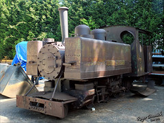 One for later... (Roger Dimmick) Tags: uk england train britishisles engine railway trains steam staffordshire gauge narrow warwickshire locomotives narrowgauge statfoldbarn