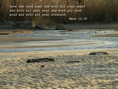 Mark 12:30 (Sapphire Dream Photography) Tags: life inspiration love ice beach church water religious frozen sand truth power christ god mark religion jesus slush christian beaches religions scripture christians gospel bibles testimony 43 scriptures verse verses 1230 holyspirit testament bibleverse godsword testimonies mark1230 holyinspiration beachatadistance