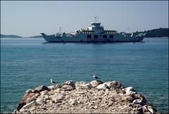 Pelješac Peninsula & seagulls (Tara Vijoglavin Mančić) Tags: blue sea summer seagulls ship gulls land peninsula