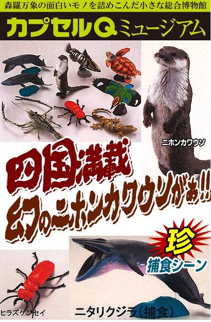 膠囊Q博物館「日本動物」第4彈 四國篇推薦