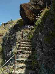 Mountain Path, Madeira (uempe (only sporadically here)) Tags: mountain mountains portugal nature berg rock stairs digital landscape photo europa europe foto path natur stairway panasonic treppe trail step fels landschaft madeira weg stufe felsen gebirge pfad picoruivo 2013 picodoarieiro panasoniclumixdmcfz7