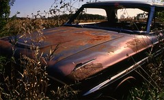"""img135 (""""Jimmer"""" ( http://jim-vance.pixels.com )) Tags: abandoned car decay rusty rusted corrosion"""