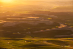 Dreamy Sunset at the Palouse (djniks) Tags: park sunset grass washington butte state hills eastern rolling 2012 palouse steptoe steptoebutte canon5dmkii canon70200f28isii