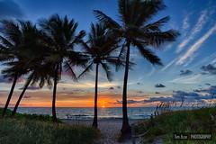 Deerfield Beach Sunrise (Tim Azar) Tags: ocean blue trees sunset sky orange tourism beach water clouds sunrise landscape coast sand florida path shoreline shore tropical deerfieldbeach hdr seaoats
