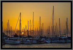 Sunset through the Masts-1=