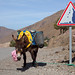 Transport, Atlas Mountains