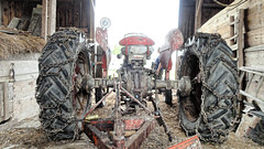 Massey Ferguson (joeldinda) Tags: tractor building barn interior sony may stjohns cybershot weatheredwood sonycybershot farmequipment dewitt bennettfarm 2015 pocketcam 2836 sonydsch55 dsch55
